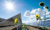 Energías renovables y uso eficiente de la energía
