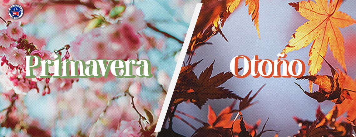 Autumn & Spring